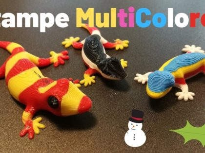 Oggetti Multicolore con la Stampante 3D